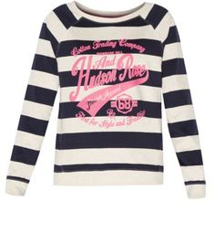 Blue Hudson and Rose Stripe Motif Sweater