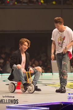 160423 Daesung - VIP Fanmeeting in Kobe, Japan