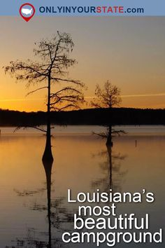 Travel   Louisiana   Attractions   Camping   Campgrounds   USA   Places To Visit   Louisiana Campground   State Park   Lakes   Forests   Outdoor   Adventures   Scenic Hikes   Cabins   Trails   Easy Hikes   Swimming   Destinations   Getaways