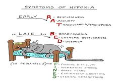 Assessment of the Respiratory System | Nursing Diagnosis