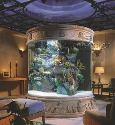 There has got to be an aquarium in my future home!