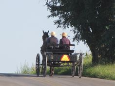 Are the Amish *really* closed off to outsiders? - How to get an inside look at the Amish - Amish Wisdom