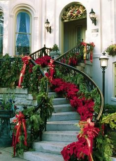 Love how the walk is lined with poinsettias. Might do this with our front walk and flower beds this year.