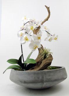 centerpieces orchids Driftwood Garden on stand Orchid Flower Arrangements, Orchid Planters, Orchid Centerpieces, Ikebana Flower Arrangement, Vase Arrangements, Wedding Centerpieces, Orquideas Cymbidium, Deco Nature, Dish Garden