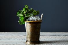 Mint Julep recipe on Food52.com