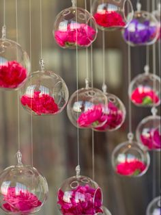 Flowers hanging in crystal balls