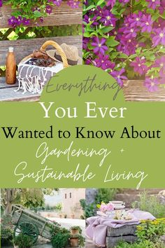 In this ultimate bundle you will have immediate access to gardening ideas, gardening tips, gardening hacks, and sustainable living tips.  Learn about homesteading, food preservation, and raising animals.