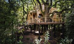 The Woodman's Treehouse in South West England is a perfect combination of sustainable craftsmanship and luxury design.