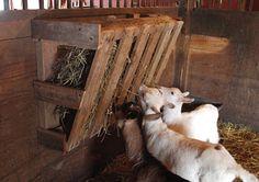 Building a pallet hay feeder, EASY