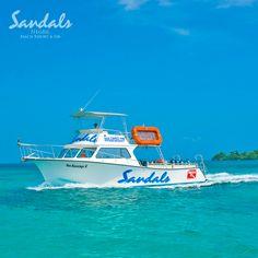 Sandals fleet of specially designed, Twin Diesel Newton Boats.