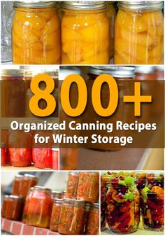DIYnCrafts.com: 800+ Organized Canning Recipes for Winter Storage - If you have grown a garden this summer or if you simply have an abundance of vegetables and fruits that you want to preserve for winter, there are many ways of canning those foods. -- Traditionally, canning was a way to keep foods that were abundant in summer and make them last until the garden came out again the next year.