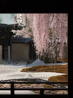 京都、高台寺、庭園、石庭