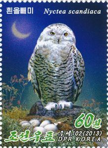 Snowy Owl (Bubo scandiacus) postage stamp