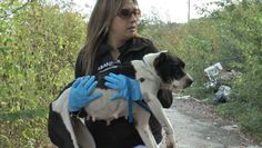 Puppy Abandoned On 'Dumping Ground' Is About To See His Mom Again