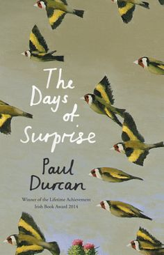 The Days of Surprise - poems by Paul Durcan.