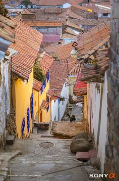 https://flic.kr/p/ybHyjf | Cusco 2015 -- City Streets