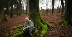 """Peter Wohlleben, a career ranger, has topped best-seller lists with """"The Hidden Life of Trees,"""" describing trees as social beings that communicate on the """"Wood Wide Web."""""""