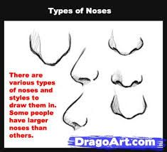 how to draw realistic nose step by step for beginners