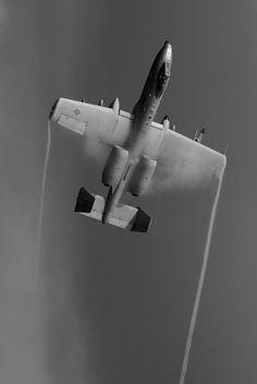 A-10 Warthog ( great shot )
