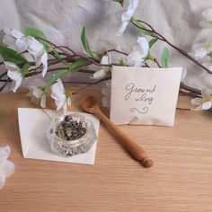 Dried Ground Ivy   Herbs for Spells and Rituals   BrianaDragon Creations