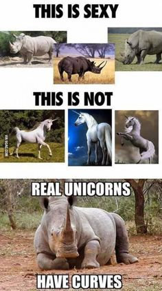 Real unicorns.