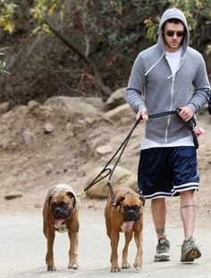 Photo of Justin Timberlake & his  Dog Tina & Mark