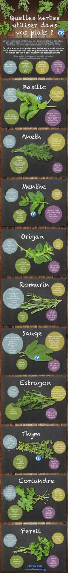 Quelles+Herbes+Aromatiques+Utiliser+Dans+Vos+Plats+?+Le+Guide+Pour+Ne+Plus+JAMAIS+Se+Tromper.