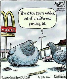 Dieting Humor - Best Funny Jokes and Hilarious Pics Cartoon Jokes, Funny Cartoons, Funny Jokes, Hilarious, It's Funny, Funny Gifs, Food Cartoon, Funny Comedy, Funny Sayings