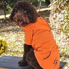 Sport Dog Hoodie - Orange Popsicle