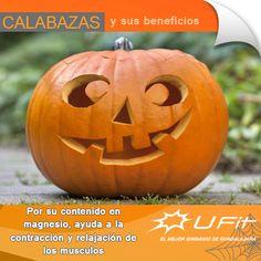 Come mucha calabaza éste y todos los meses del año #Halloween