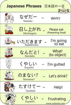 Phrases Basic Japanese Words, How To Speak Japanese, Kanji Japanese, Japanese Quotes, Japanese Phrases, Study Japanese, Japanese Culture, Learning Japanese, Learning Italian