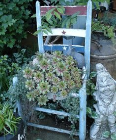 Succulents And Cactus Slideshow by cindee011461   Photobucket