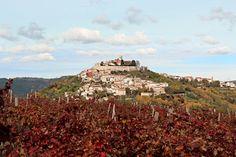 View of Motovun, Croatia by LightNuance on @creativemarket