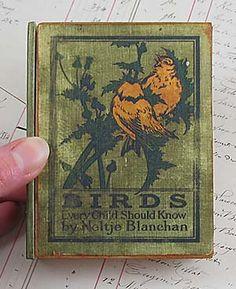 Birds Every Child Should Know by Neltje Blanchan 1907