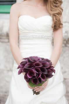 """""""Black"""" (purple) calla lilies (Jessica used these in her wedding. They were gorgeous. We ordered them from Costco.) -- Coral Gables Country Club Wedding by Captured Photography by Jenny Calla Lily Wedding, Purple Wedding, Our Wedding, Wedding Flowers, Dream Wedding, Wedding Stuff, Fantasy Wedding, Wedding Bells, Perfect Wedding"""
