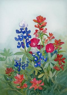 Texas Wildflowers Canvas Print by Sue Kemp. All canvas prints are professionally printed, assembled, and shipped within 3 - 4 business days and delivered ready-to-hang on your wall. Choose from multiple print sizes, border colors, and canvas materials. Watercolor Cards, Watercolor Flowers, Watercolor Paintings, Watercolors, Watercolor Pictures, Wreath Watercolor, Watercolor Ideas, Painting Flowers, Wildflower Tattoo