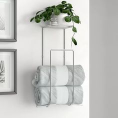 Looking for Demi Wall Mounted Towel Rack Dotted Line? Check out our picks for the Demi Wall Mounted Towel Rack Dotted Line? Bathroom Towel Storage, Toilet Storage, Bathroom Towels, Bathroom Organization, Towel Shelf, Bathroom Mirrors, Cheap Home Decor, Diy Home Decor, How To Roll Towels