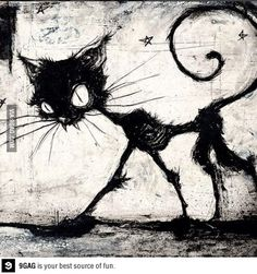 Tim Burton cat