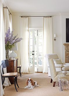 Barbara Howard created a light, feminine scheme for young couple completed by the addition of their elegant King Charles Cavalier Spaniel. via Atlanta Home