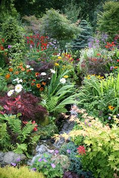 Lower garden stream (August by Four Seasons Garden Plants, English Garden, Gorgeous Gardens, Garden Stream, Dream Garden, August Garden, Rock Garden Landscaping, Pretty Gardens, Beautiful Gardens