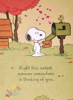Thinking of you - Snoopy - Snoopy Cartoon, Peanuts Cartoon, Peanuts Snoopy, Snoopy Images, Snoopy Pictures, Charlie Brown Quotes, Charlie Brown And Snoopy, Peanuts Quotes, Snoopy Quotes