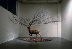 Beautifully Surreal Sculpture : http://www.mymodernmet.com/profiles/blogs/beautifully-surreal-sculptures