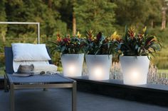 Deze verlichte plantenbakken geven sfeer aan de tuin #garden #lighting