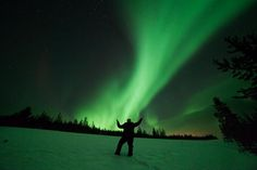 Twitter / Aurora_Zone: Behold our green skies!! Fox Running, Green Sky, Aurora Borealis, The Magicians, Finland, Serenity, Northern Lights, Timeline, Travel