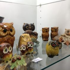 So what's the name for a flock of owls? Because they are everywhere!