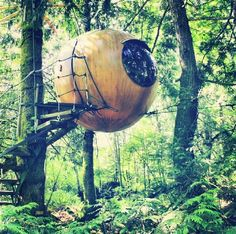 """<a href=""""http://www.freespiritspheres.com/"""" target=""""_blank"""">The Free Spirit Spheres</a> on Vancouver Island, Canada"""