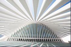 サンティアゴ・カラトラバ | 建築模型の画像(写真)                                                                                                                                                                                 もっと見る