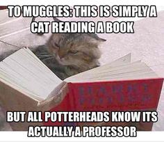 McGonagall reading a book