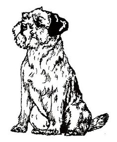 Dog Rubber Stamps Border Terrier1E Size 134 Wide X 2 Tall * You can find more details by visiting the image link.