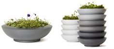 Sake planter - Nola